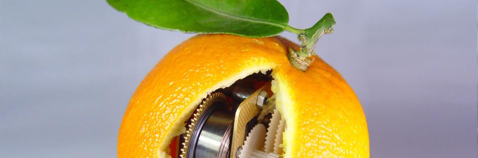 Zetgeist pomarańczy